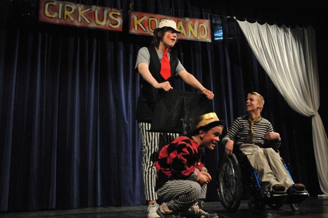 12-cirkus